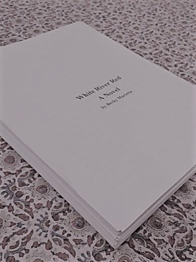 book first draft (2)